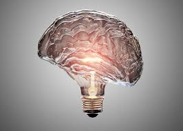 BrainBulb2